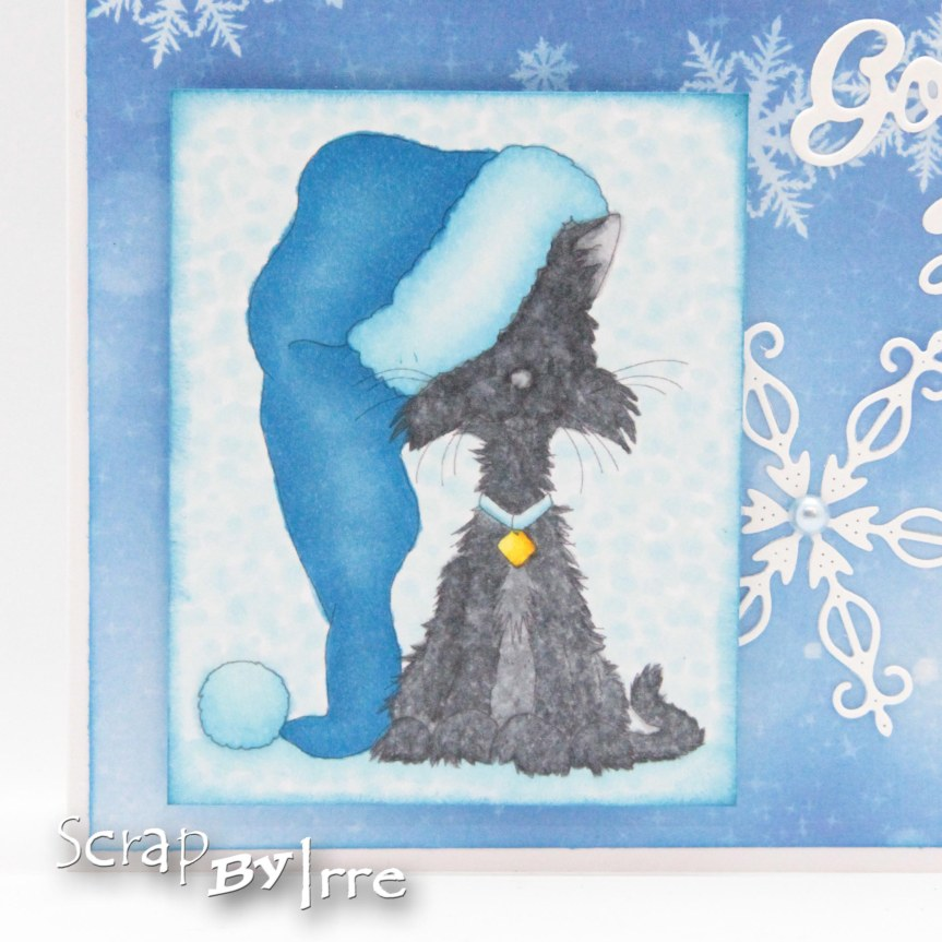 Christmas card with Scruffy Cat in a Santahat